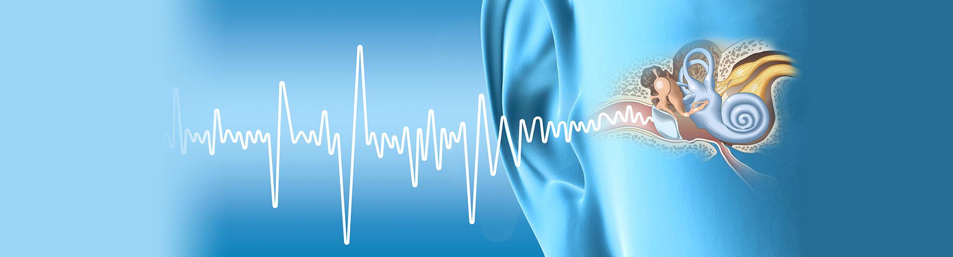 Wissenswertes Hoeren HNO Muenchen - Hören