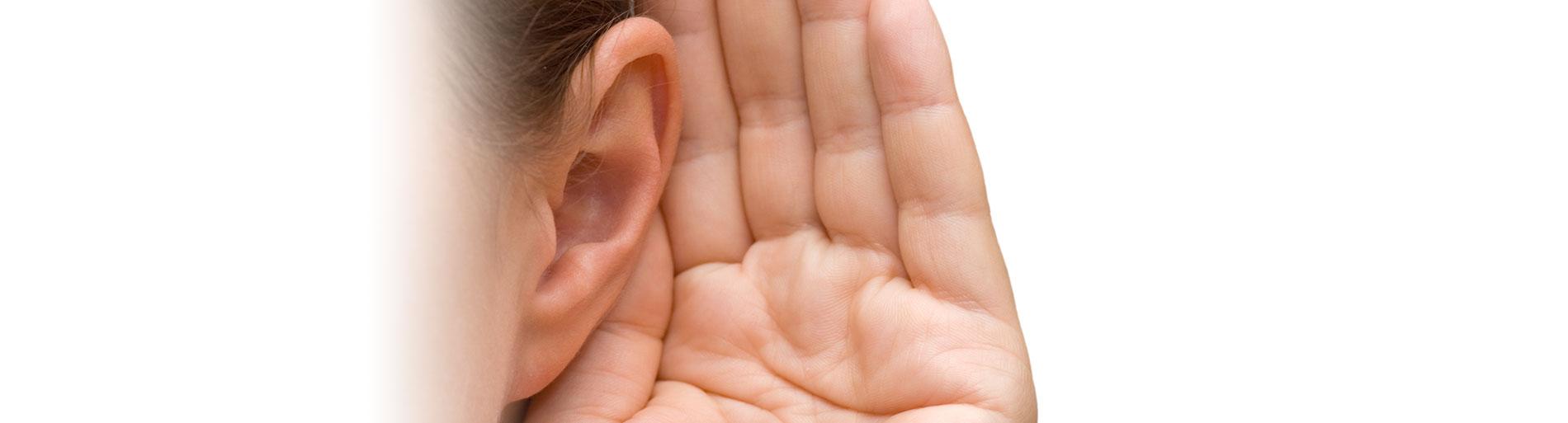 Wissenswertes Ohren HNO Muenchen - Ohren